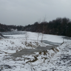 hermanice zimą